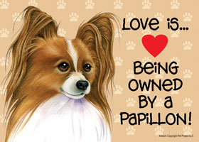 dog breed artwork by tomoyo pitcher love is being owned by a papillon tan and white coloring sign