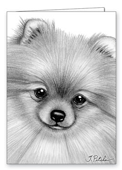 Pomeranian Colouring Pages Page 2 Dog Breeds Picture Pomeranian Coloring Pages